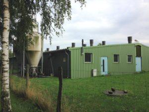 Konzentrationslager Schweine