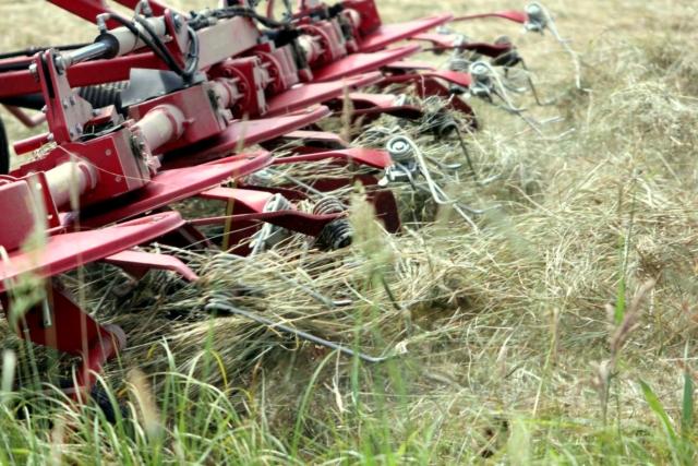 heu-wenden-bio-landwirt