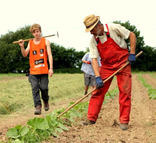 kuerbis-bio-landwirtschaft