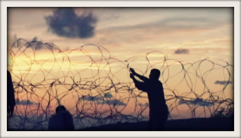 movement-against-fence